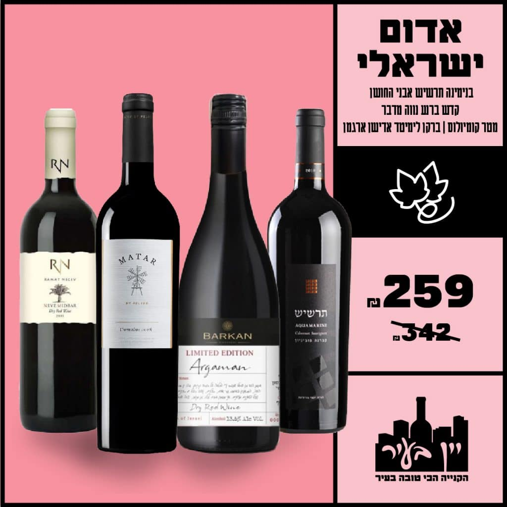 wine in the city_israeli wine_instagram_6.10.20-02